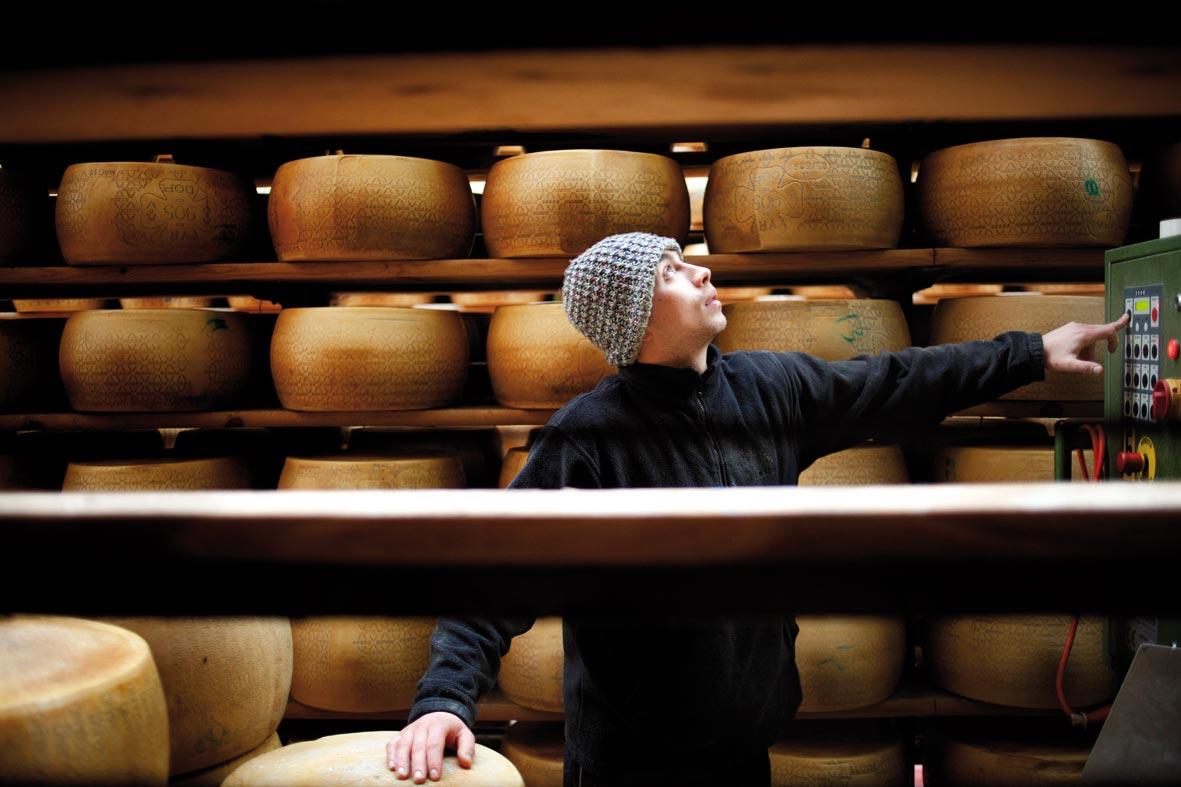 Produzione-Grana-e-Parmigiano