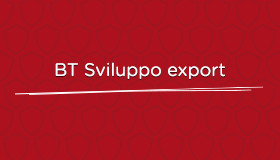 Sviluppo Export