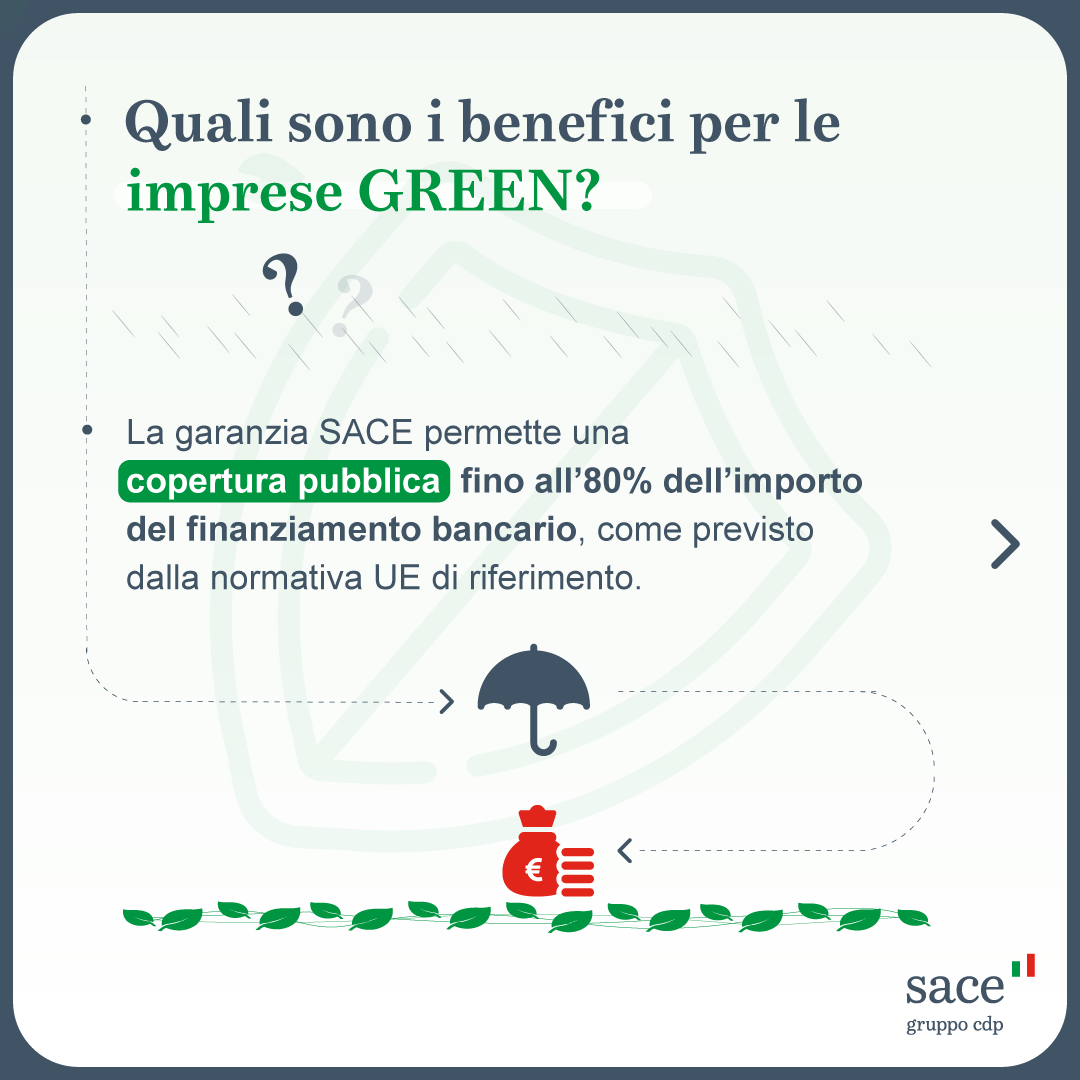 GREEN_CARDS_5